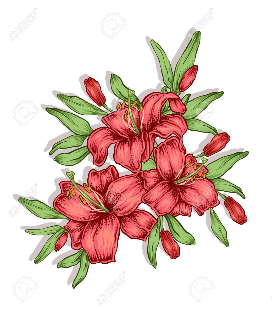 Hand drawn lily flowers decorative royal lilies composition hand drawn lily flowers decorative royal lilies composition tattoo or t shirt design izmirmasajfo