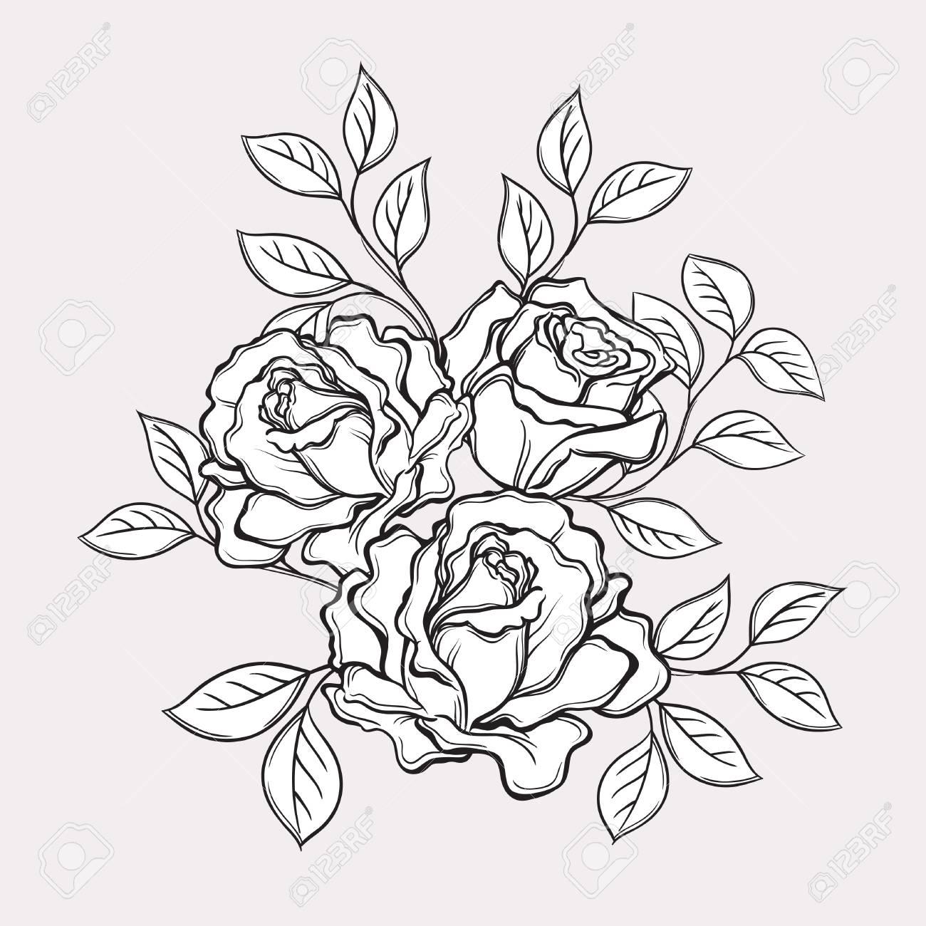 Flores Y Hojas Color De Rosa Blanco Y Negro Ilustración De Vector