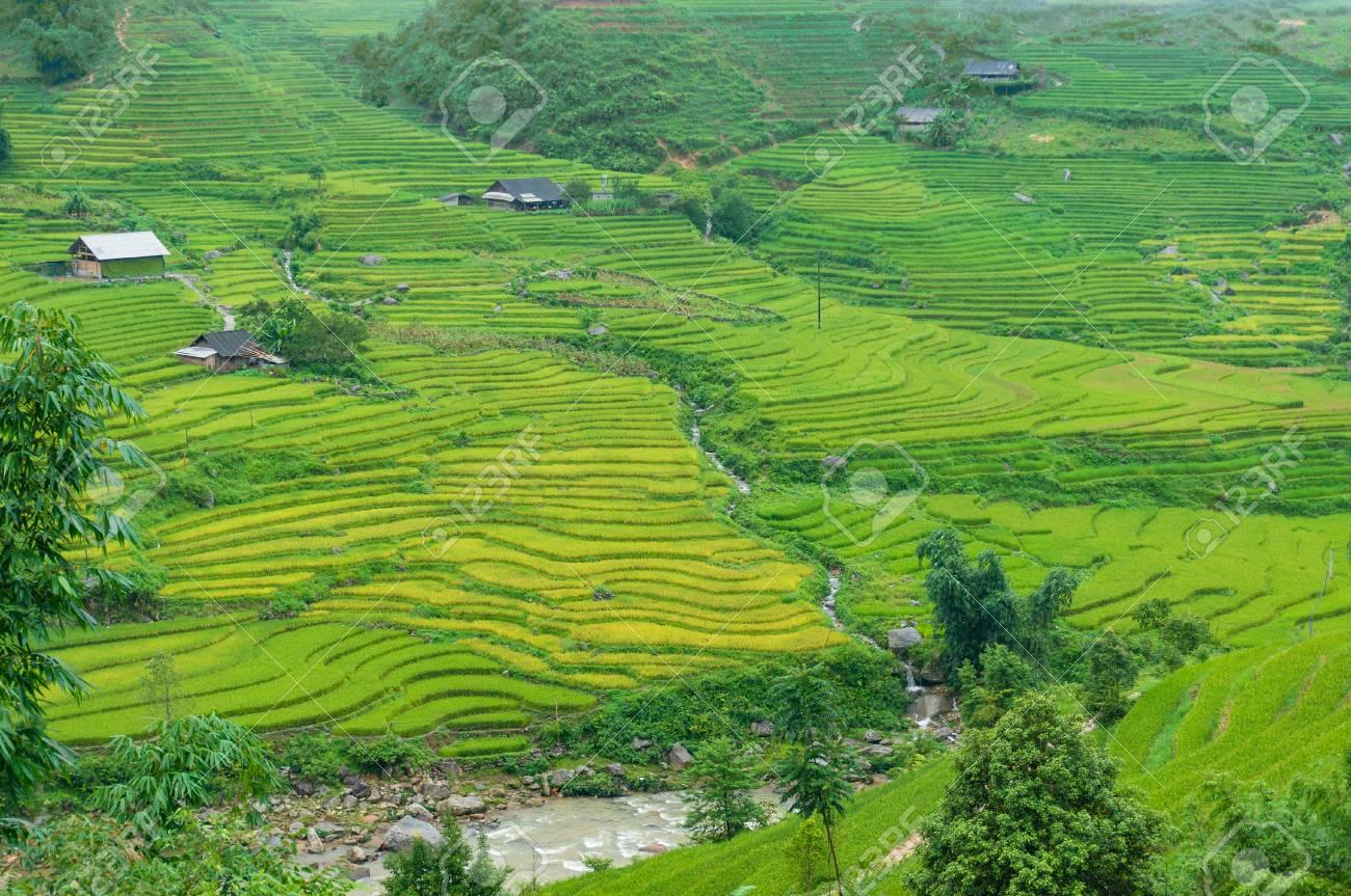 Hermoso Paisaje Rural De Terrazas De Arroz Río Y Casas De Pueblo Sa Pa Vietnam