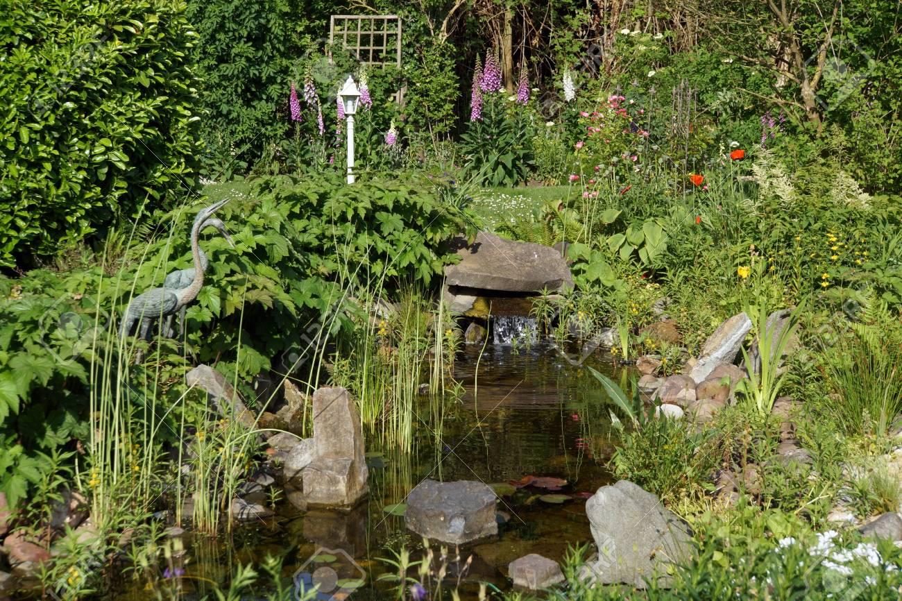 Proche de l\'étang de jardin naturel avec petite cascade