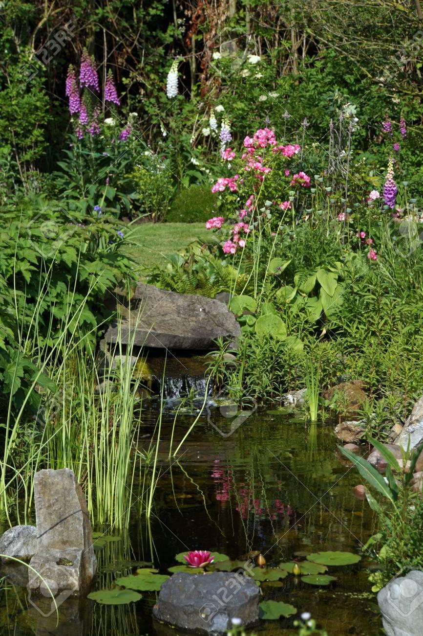Près de l\'étang de jardin nature avec petite cascade