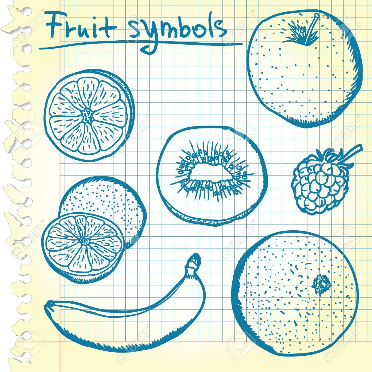 Kiwi Slice Drawing Kiwi Slice Fruit Sketches