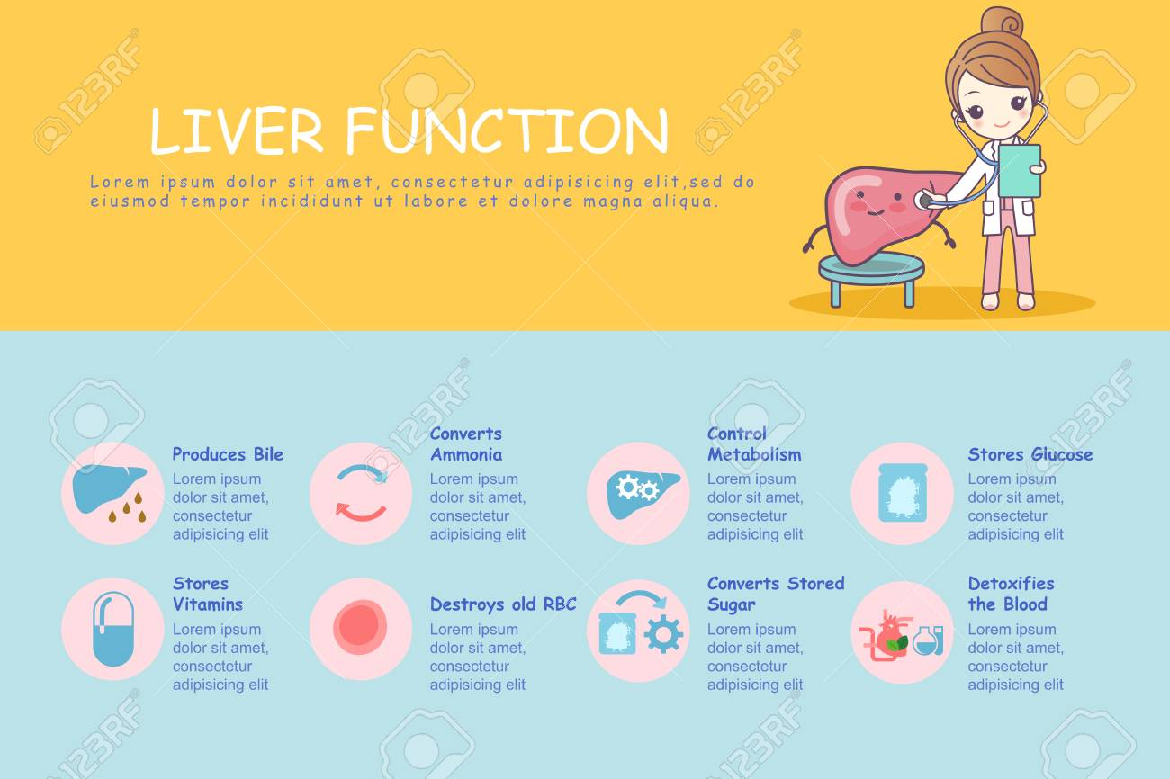Infographic Of Liver Function Great For Health Care Concept Royalty