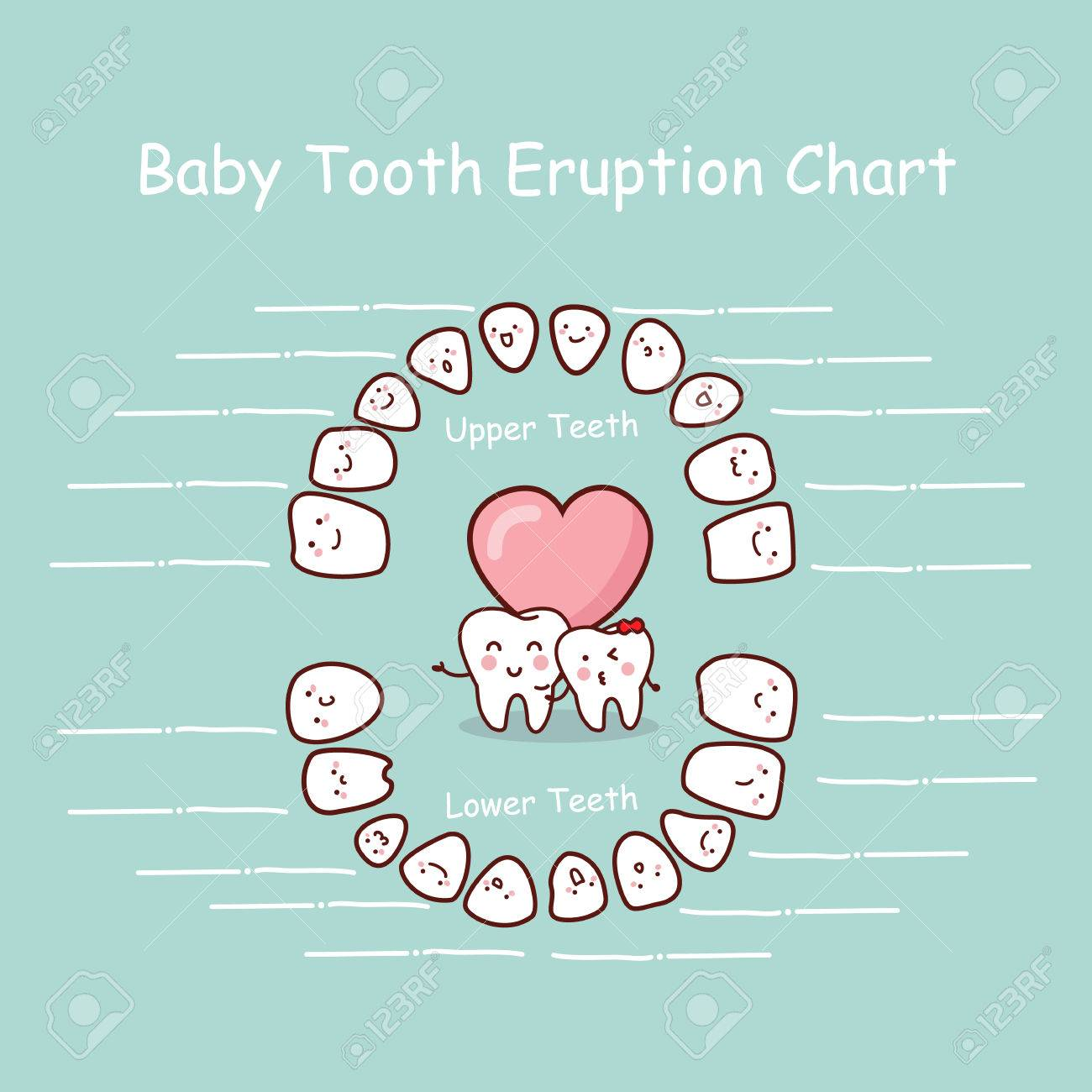 Baby Tooth Chart Eruption Record, Great For Health Dental Care ...