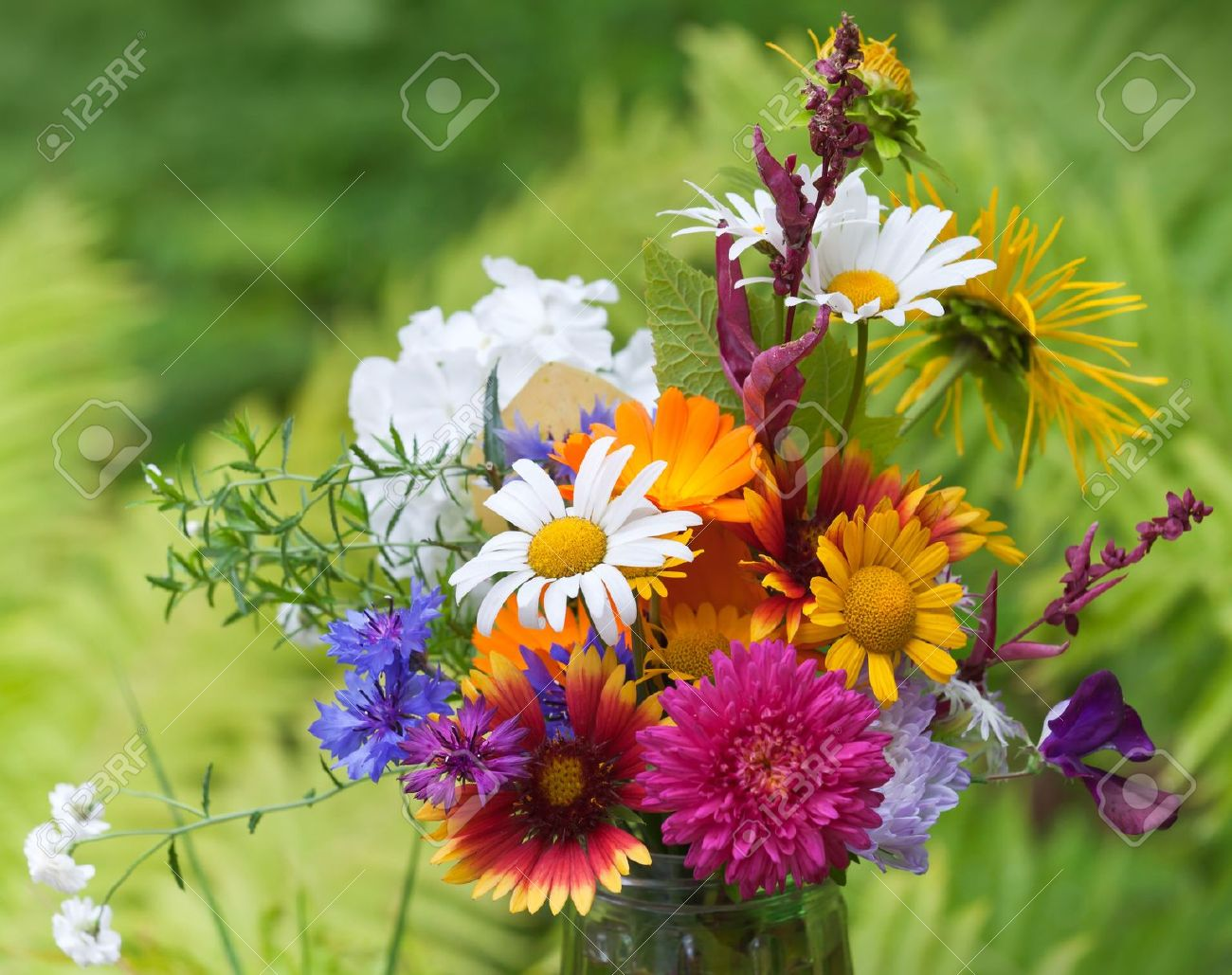 Bright Colorful Bouquet Of Garden And Wild Natural Flowers ...