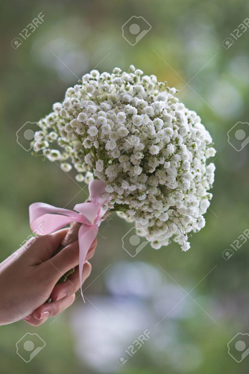 Ladys hand holding a bouquet of babys breath flowers stock photo ladys hand holding a bouquet of babys breath flowers stock photo 46607077 izmirmasajfo