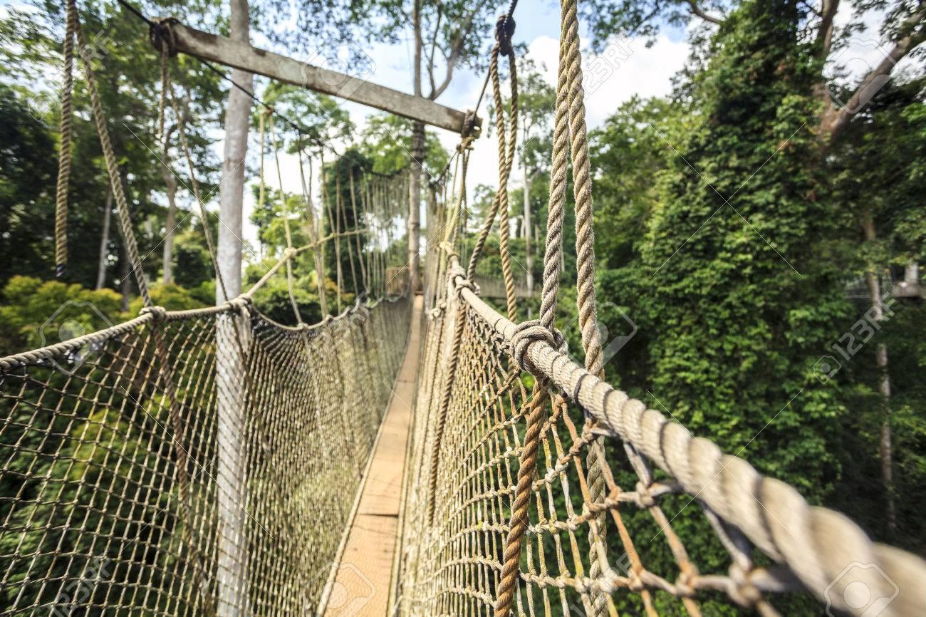 Canopy walkway in Kakum National Park Accra Region Ghana West Africa Stock Photo & Canopy Walkway In Kakum National Park Accra Region Ghana West ...