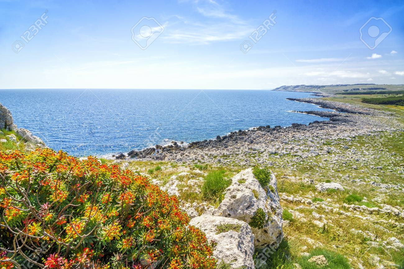 Beautiful Mediterranean Landscape With Red Flowers In Puglia