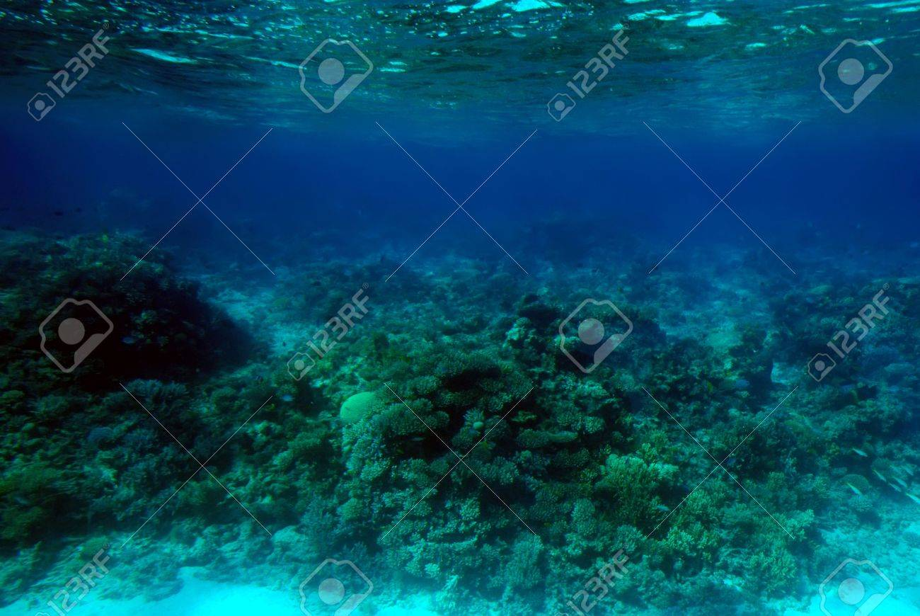 ocean oceanic images u0026 stock pictures royalty free ocean oceanic