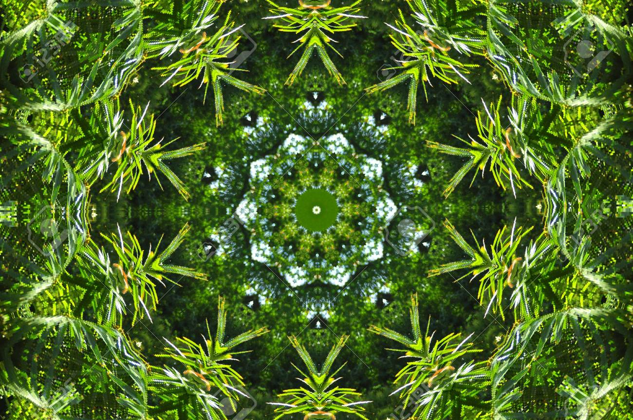 Geometrical green abstract decorative pattern Stock Photo - 6401939