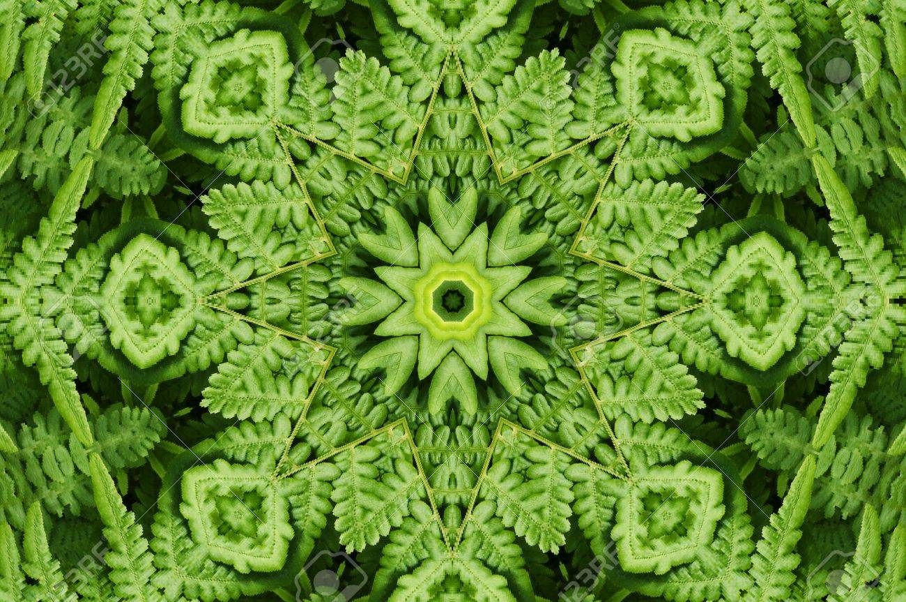 Ornament from a fern Stock Photo - 6514560