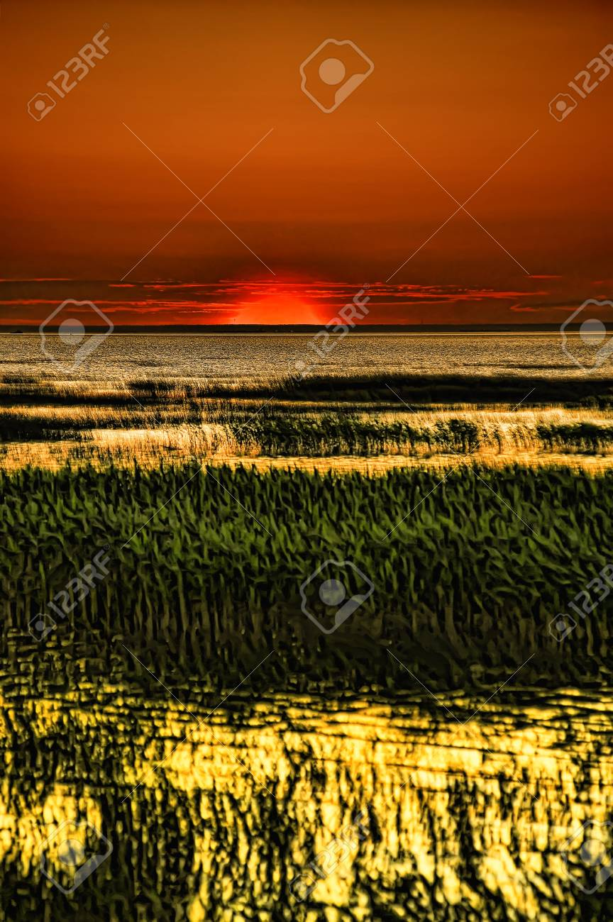 sun over the horizon and the grass Stock Photo - 9726662