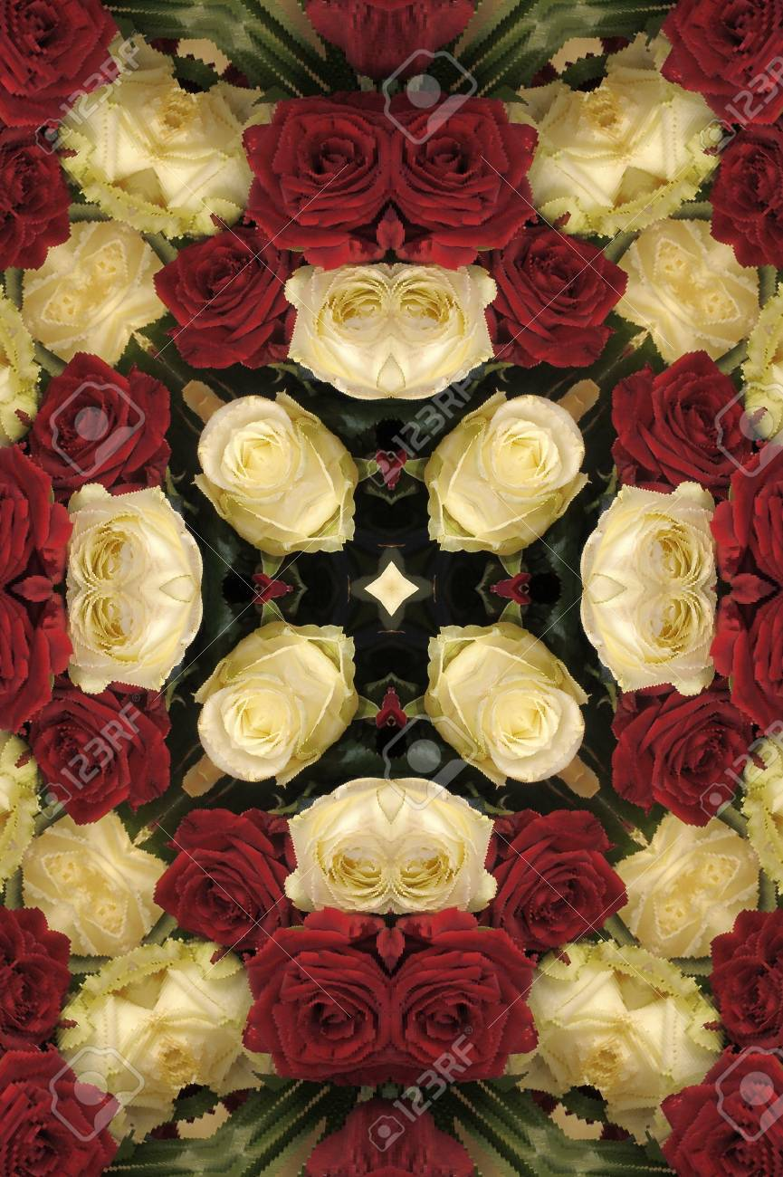 pattern of red and white roses Stock Photo - 12025879