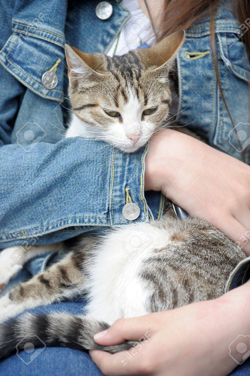 Girl Holding A Cat Stock Photo - 14414269