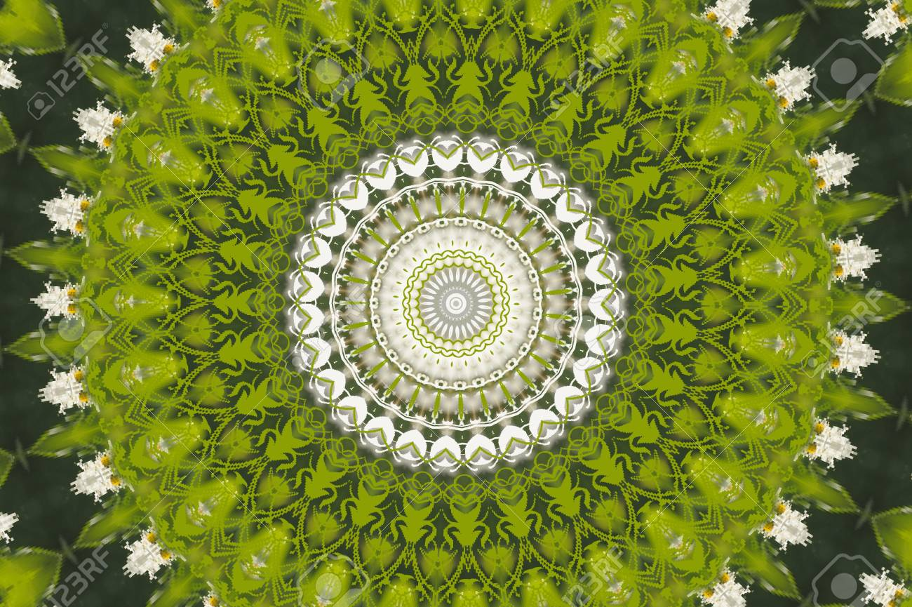 Beautiful green background with ornamental decoration Stock Photo - 16412368