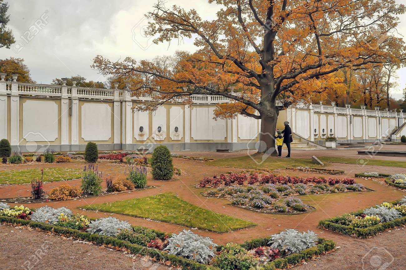 Oak Of Times Of Great Peter In Park Kadriorg. Tallinn. Stock Photo ...