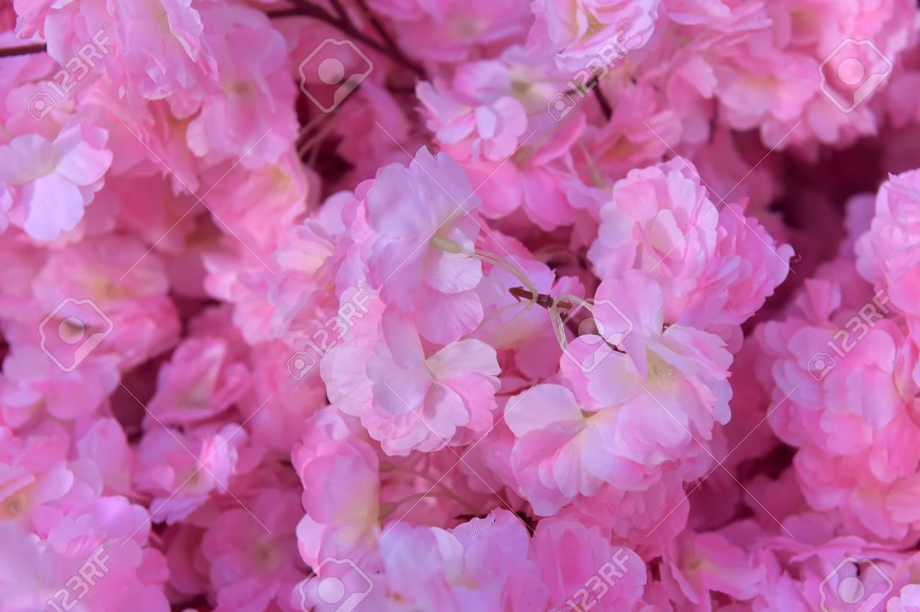 Pink Fake Flowers Background Texture Stock Photo Picture And