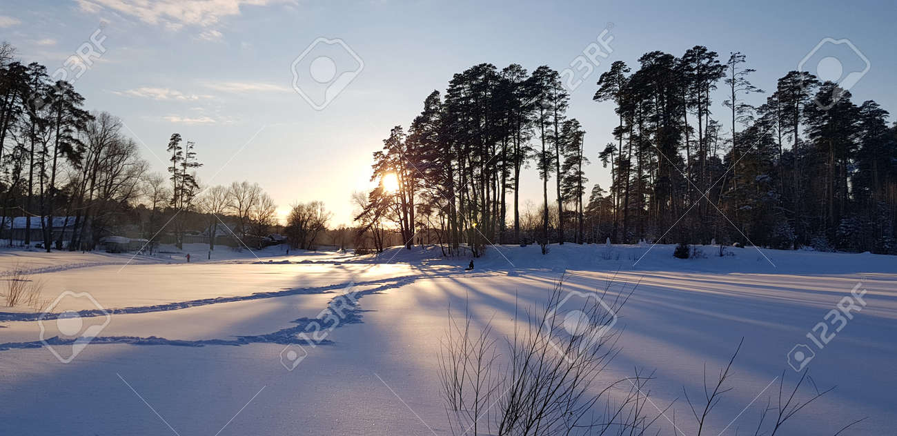 sunset in winter and long shadows from trees in the snow - 126180843