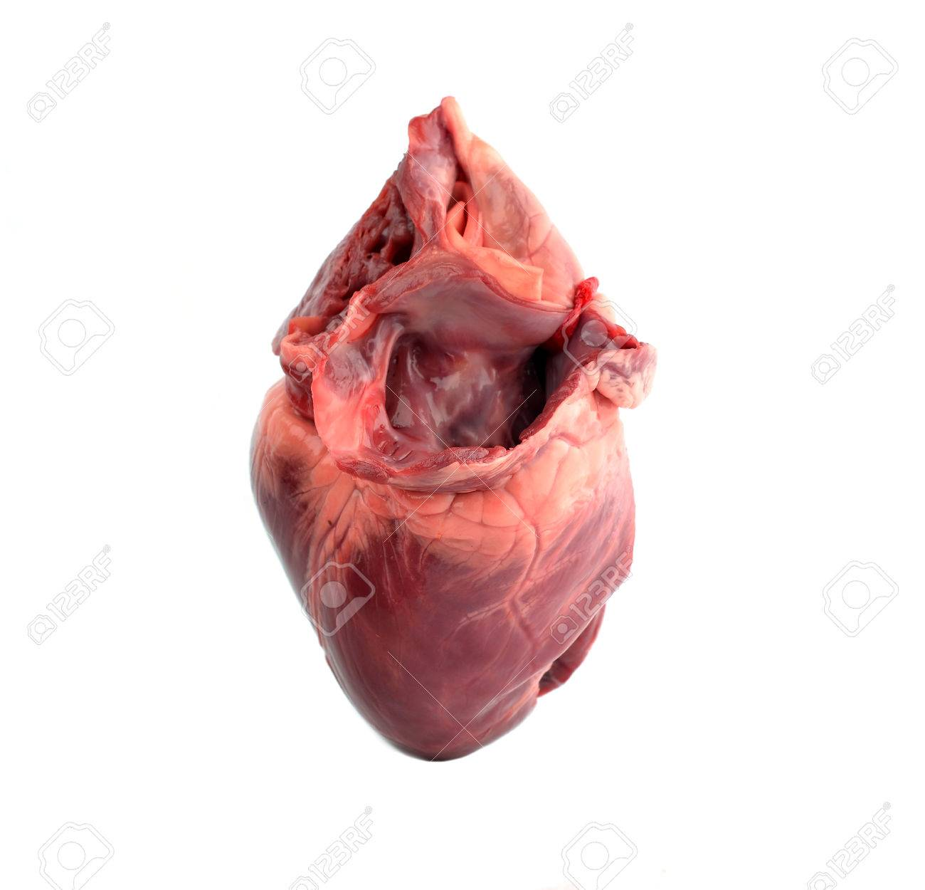 Pig Heart Stock Photo Picture And Royalty Free Image Image 26669461