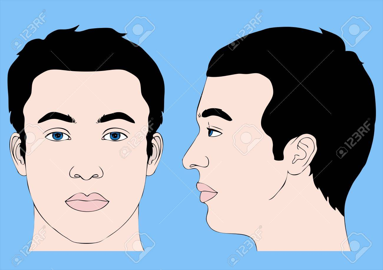 human head, front profile and left side Stock Vector - 20659432
