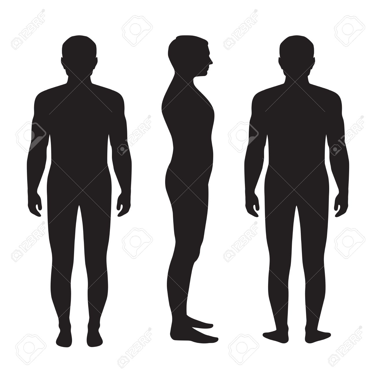 Human body anatomy vector man silhouette front back side royalty human body anatomy vector man silhouette front back side stock vector 36904042 ccuart Images