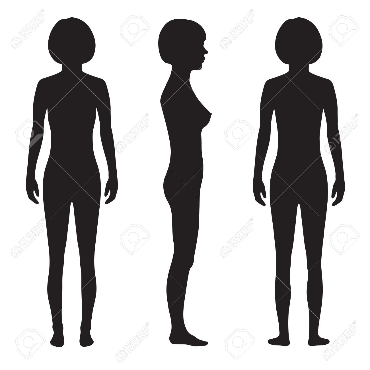 La Anatomía Del Cuerpo Humano, Frente, Dorso, Vector Silueta De La ...