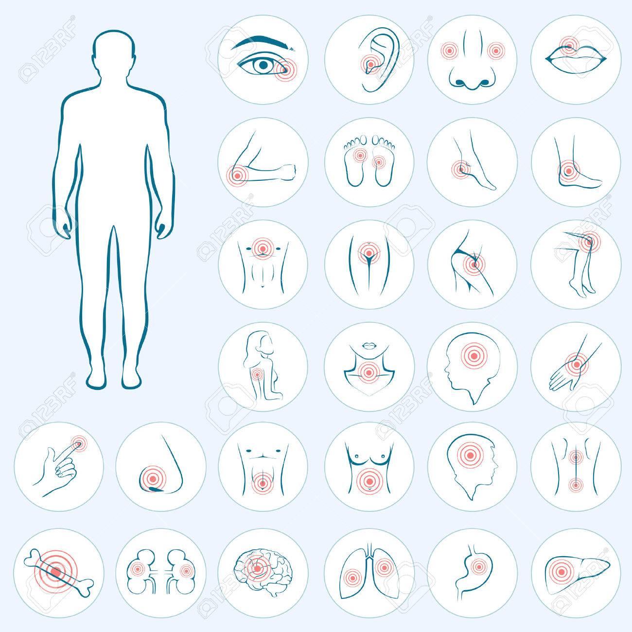 Vektor-menschliche Anatomie, Körper Schmerzen, Medizinische ...