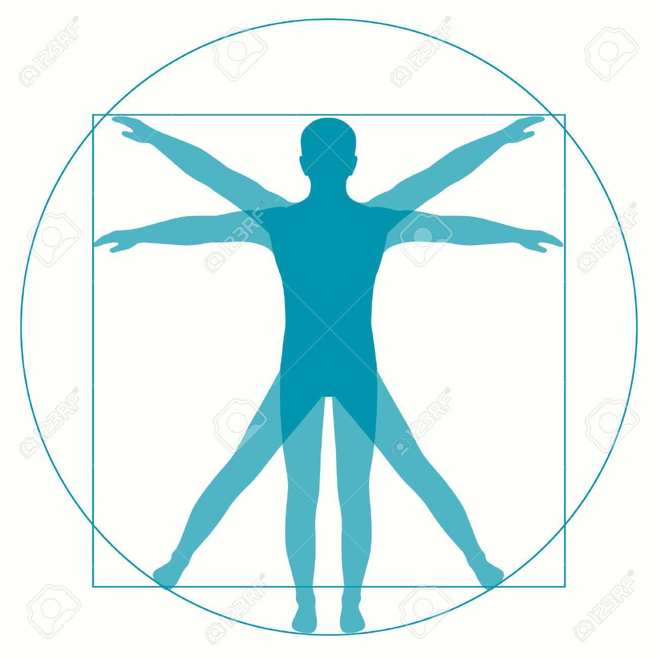 Vetruvian Man Leonardo Da Vinci Human Anatomy Royalty Free Cliparts