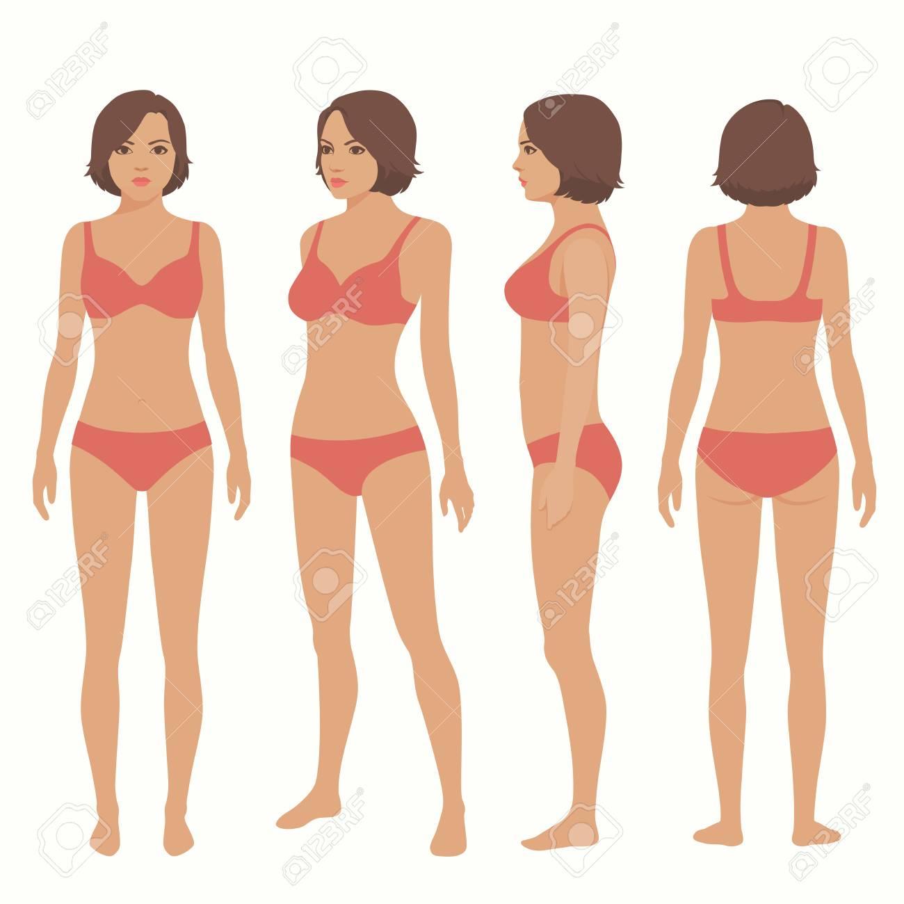 Anatomía Del Cuerpo Humano, Frente, Espalda, Vista Lateral Mujer ...