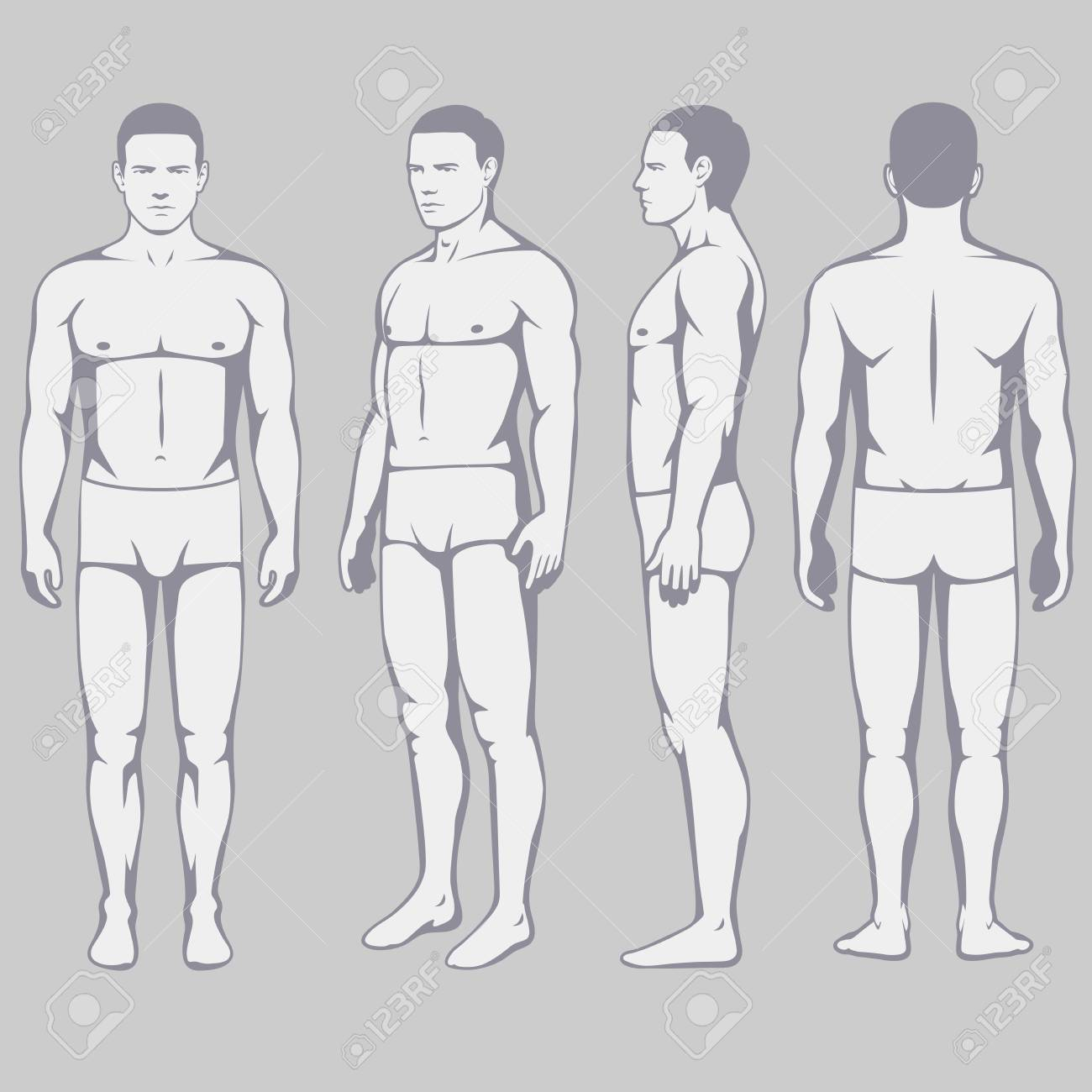 Human Body Anatomy Vector Man Front Back Side Royalty Free Cliparts