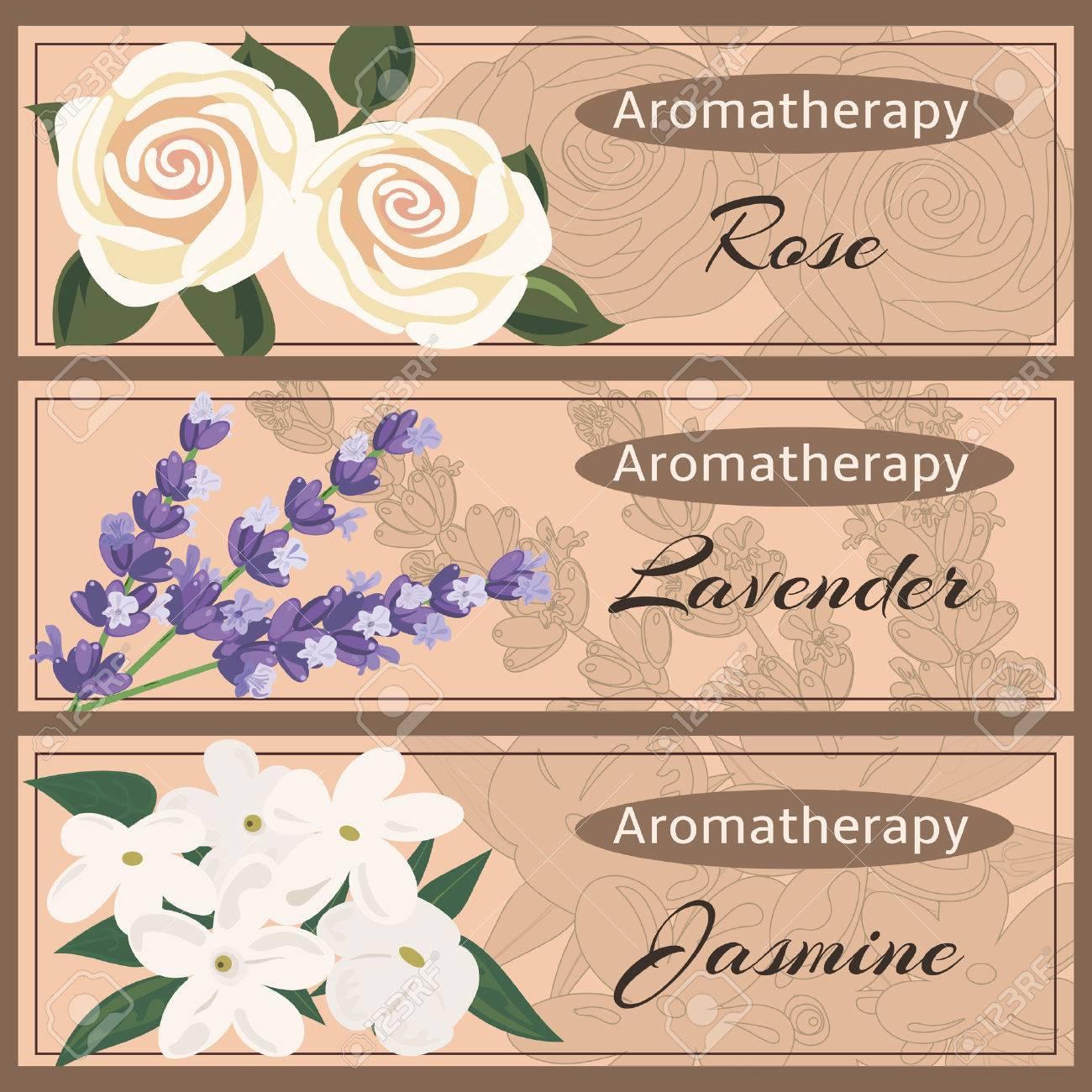 Aromatherapy set collection. Rose, lavender, jasmine banner set. - 57259632