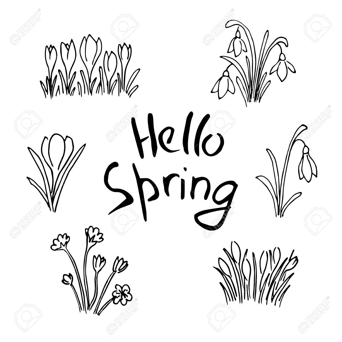 Hello Spring Sketch Set Flowers And Lettering Cute Lilac Flowers Royalty Free Cliparts Vectors And Stock Illustration Image 73106755