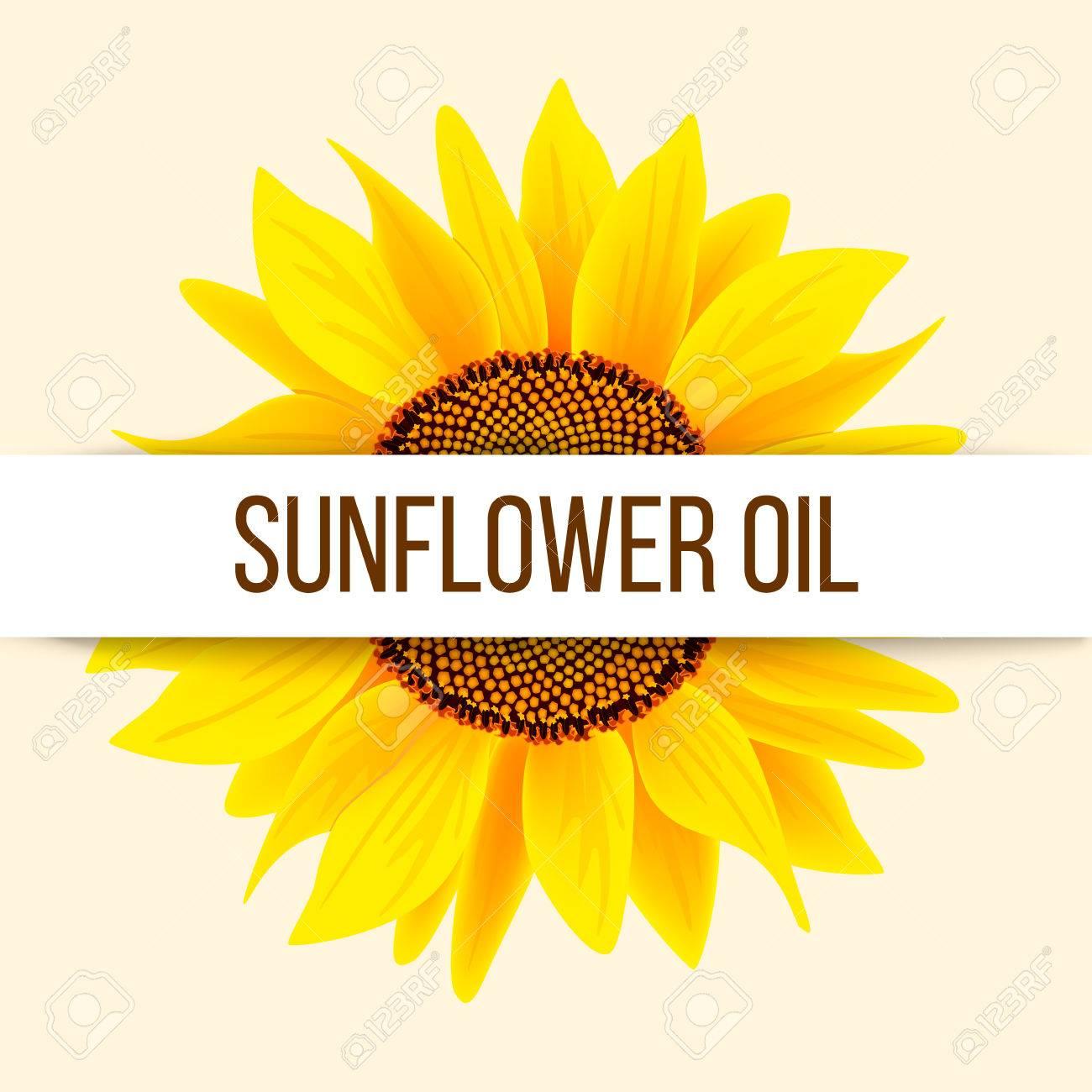 Sunflower Logo Stock Photos Royalty Free Sunflower Logo Images