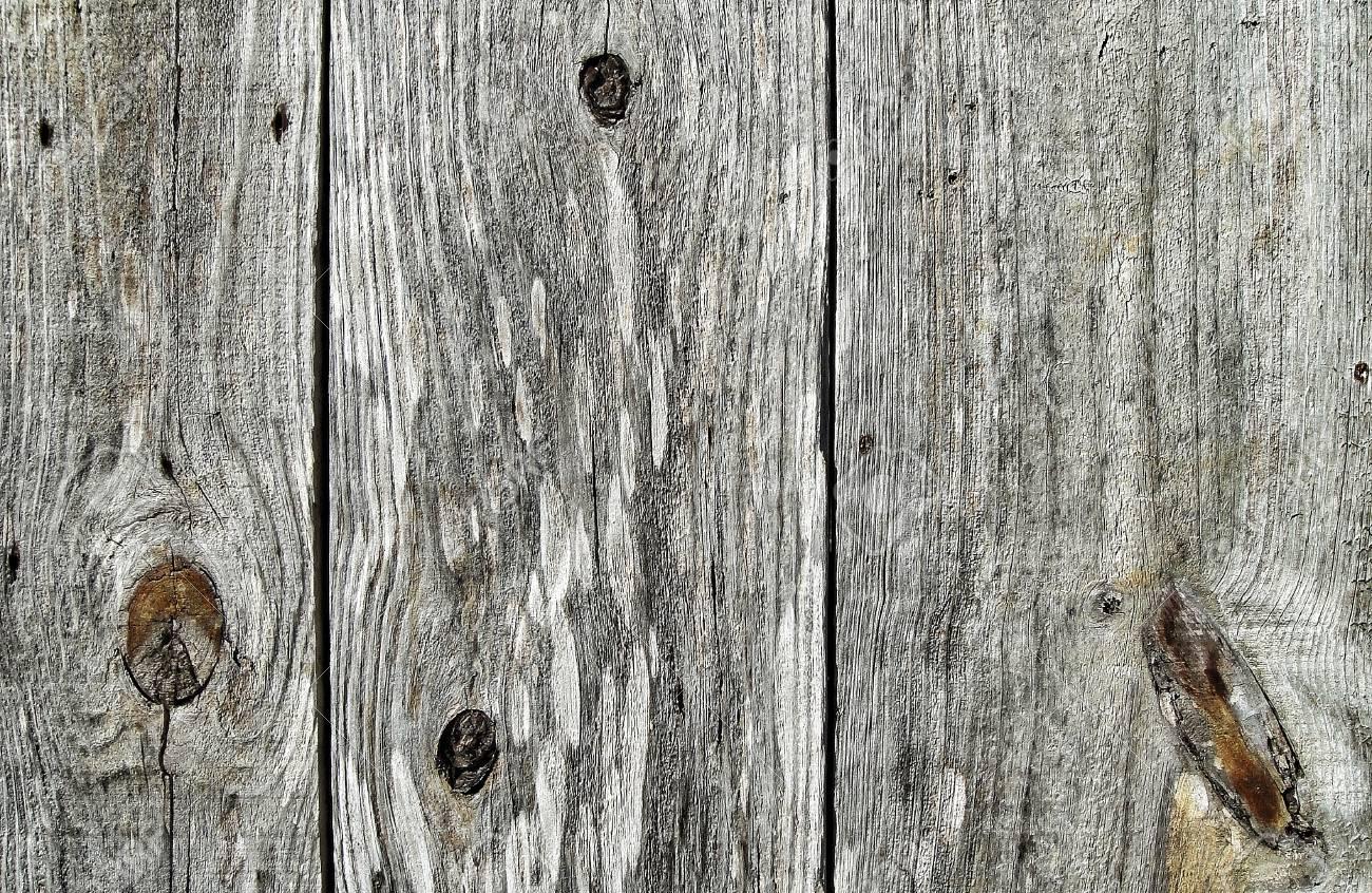 Wood texture gray - 81572059