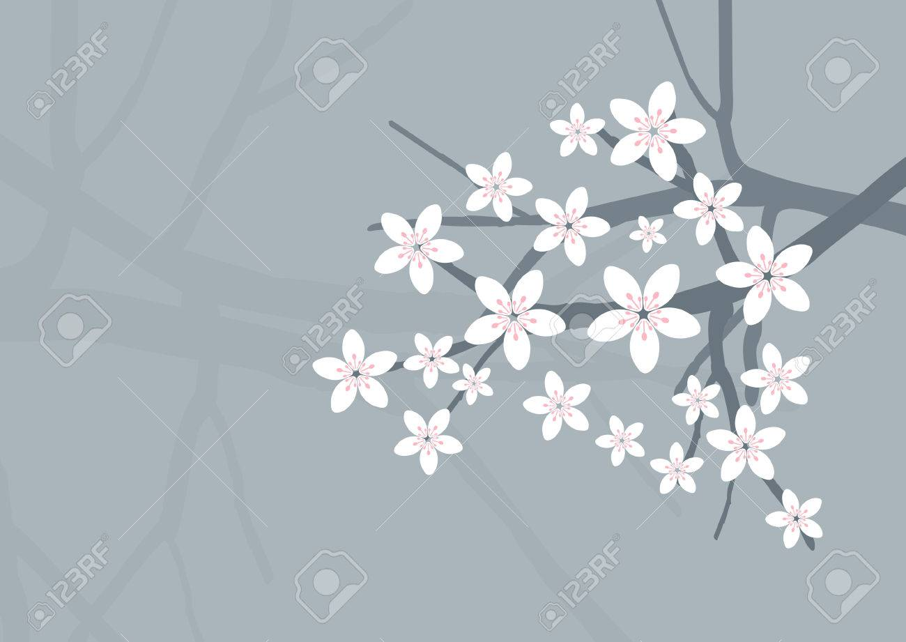 Vector Cherry Blossom Background Stock Vector - 4950156