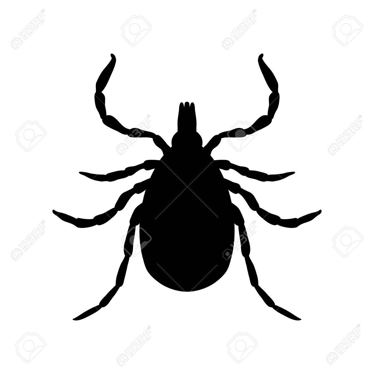 Kreuzen Parasiten. Skizze Der Tick. Mite. Kreuzen Sie Isoliert Auf ...
