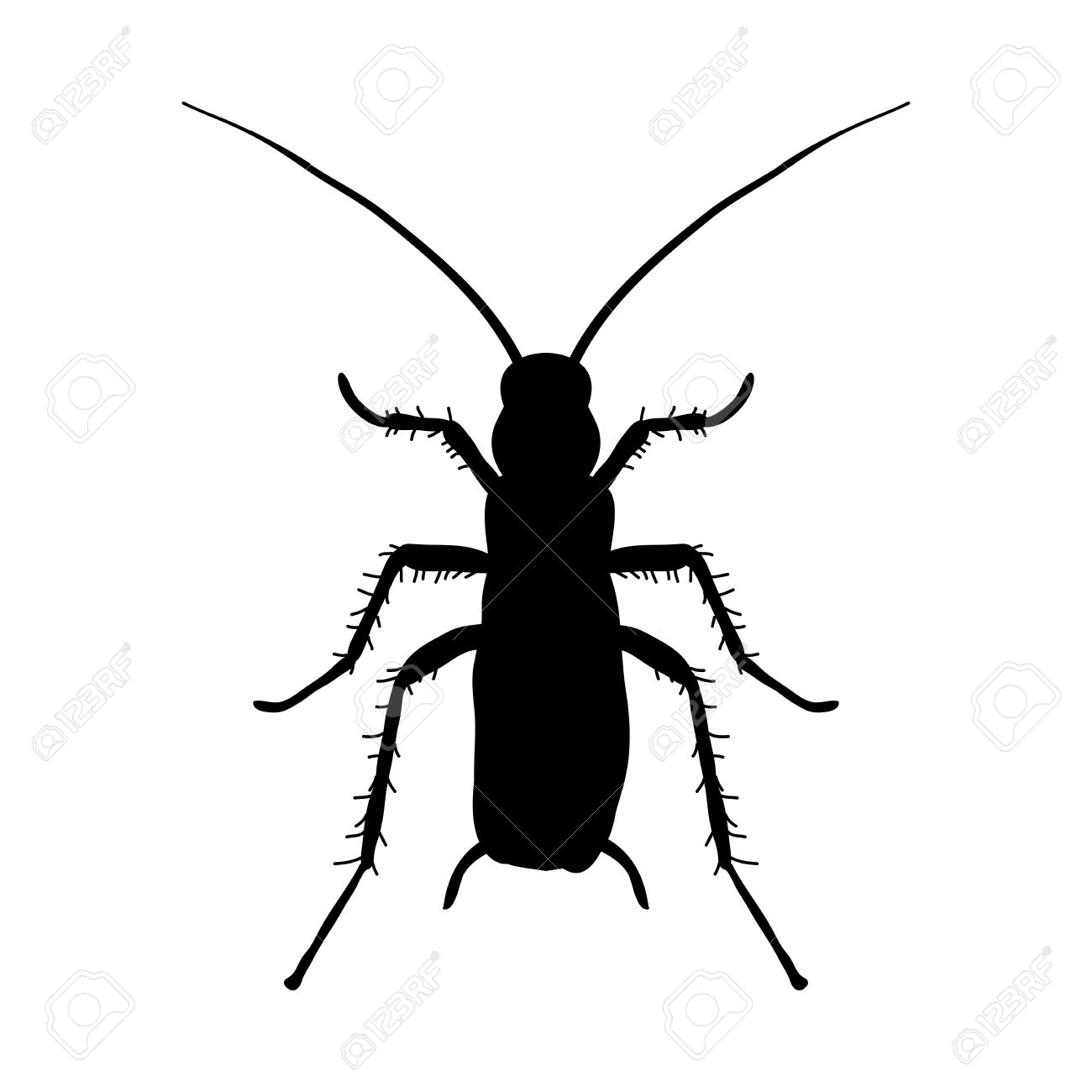 Silhouette Of Cockroach. Blattella Germanica. Cockroach. Sketch ...