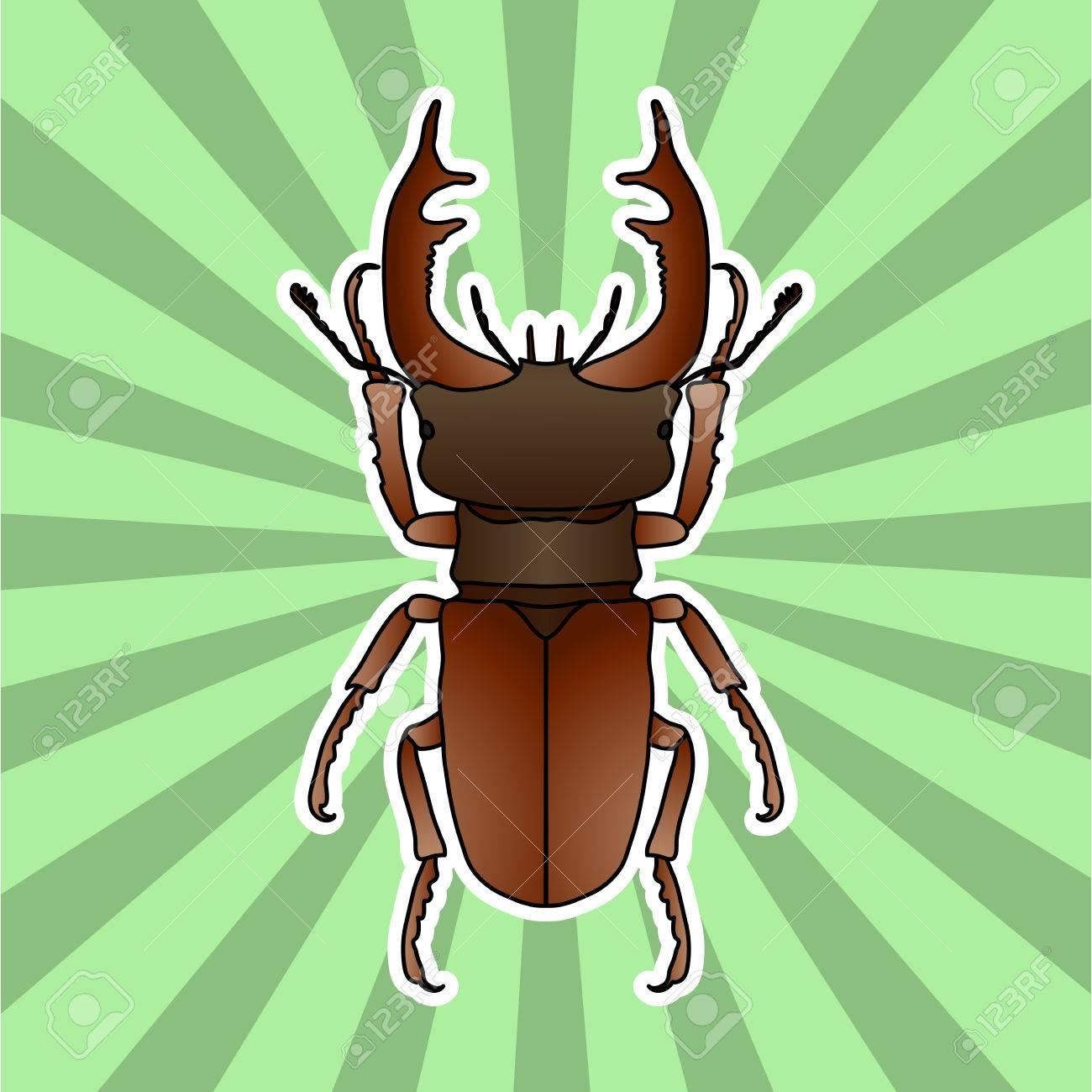 Anatomía De Insectos. Pegatina-escarabajo Ciervo. Lucanus Cervus ...