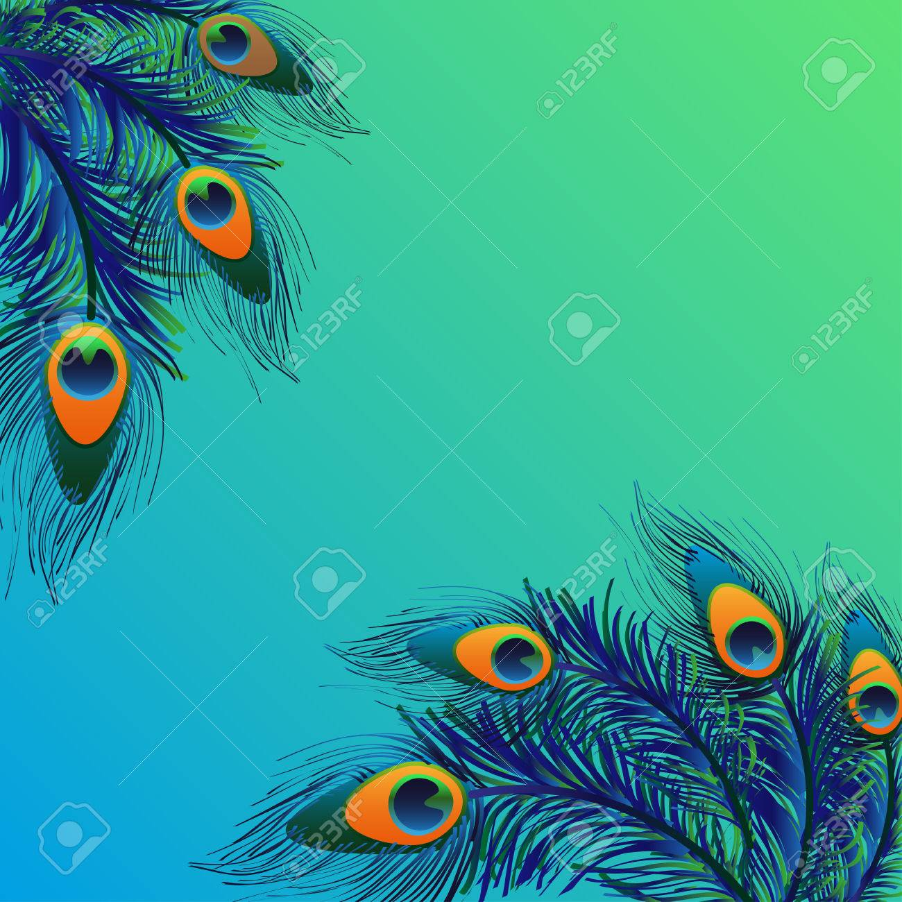 design background with feathers peacock card stock photo picture