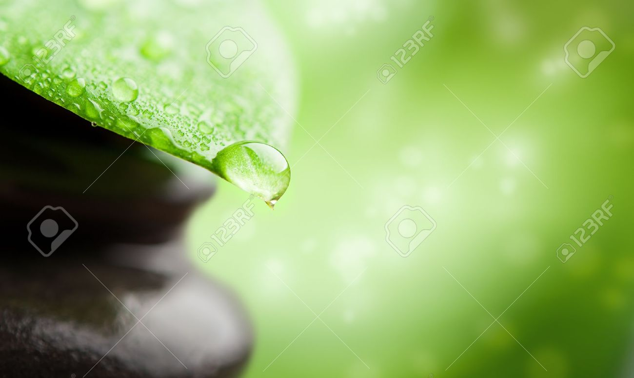 green abstract background  spa with leaf and water drop Stock Photo - 16123988