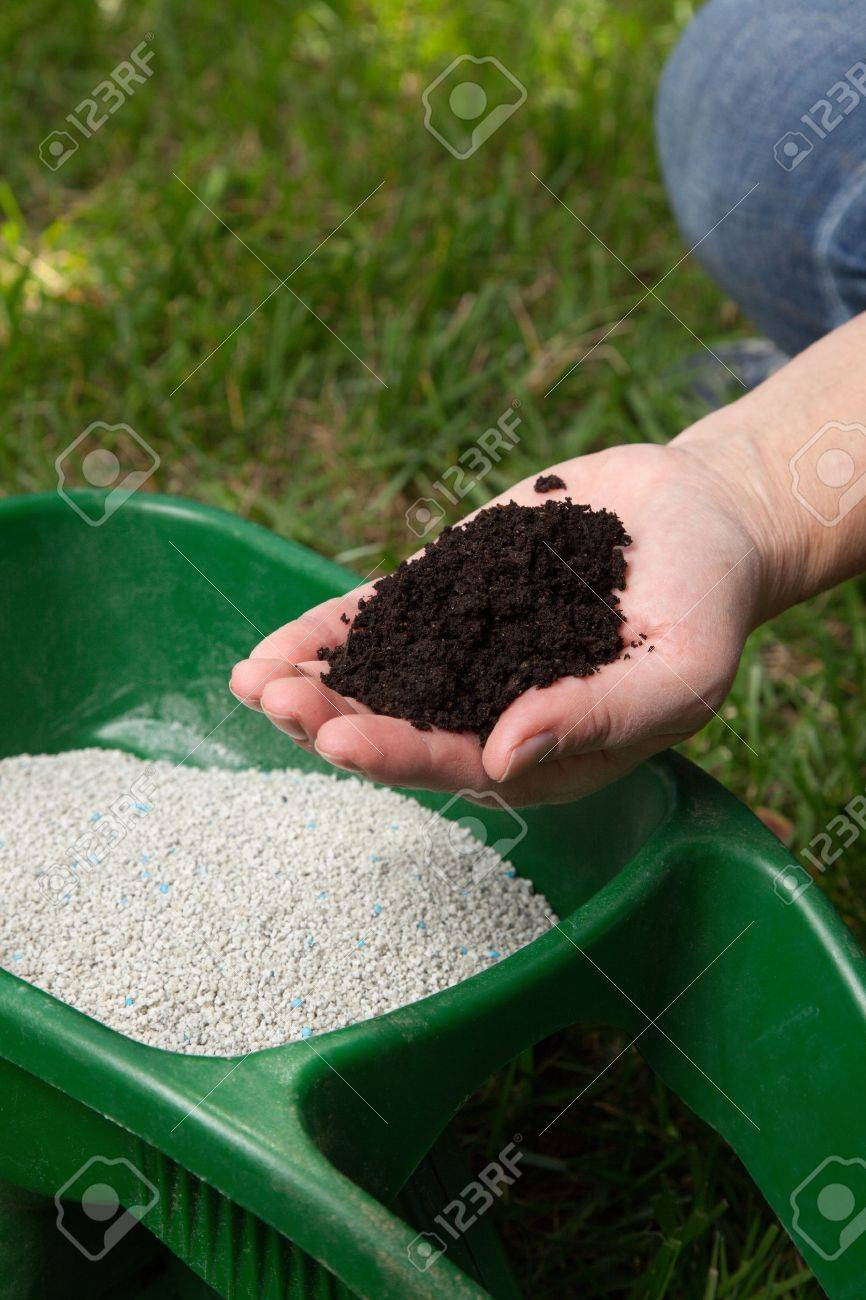 Preparing to fertilize lawn in back yard in spring time - 17183234