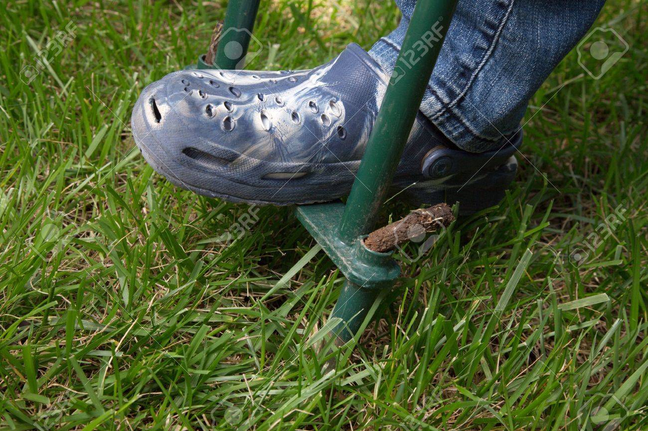 Woman is aerating lawn by manual aerator in back yard - 19409709