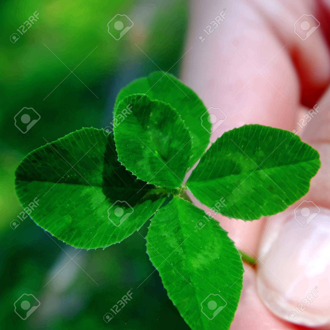 five leaf clover in a hand Stock Vector - 14714252