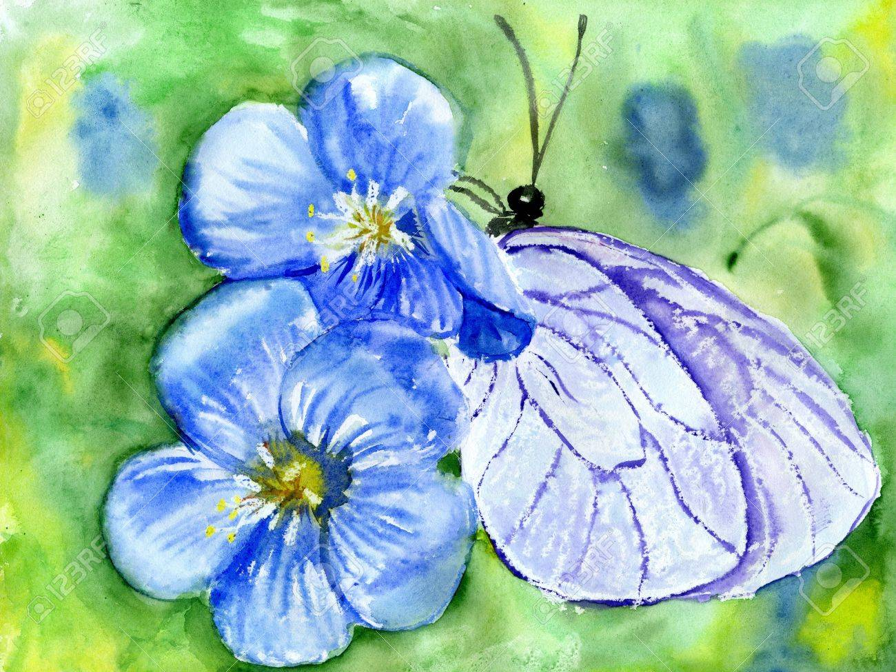 watercolors, butterfly sits on blue flower Stock Photo - 13485571