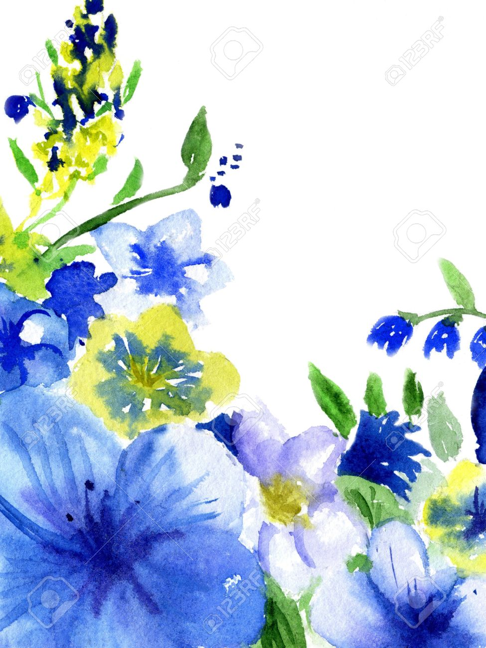 watercolor dark blue and yellow flowers on a white background stock photo picture and royalty free image image 19092029 watercolor dark blue and yellow flowers on a white background
