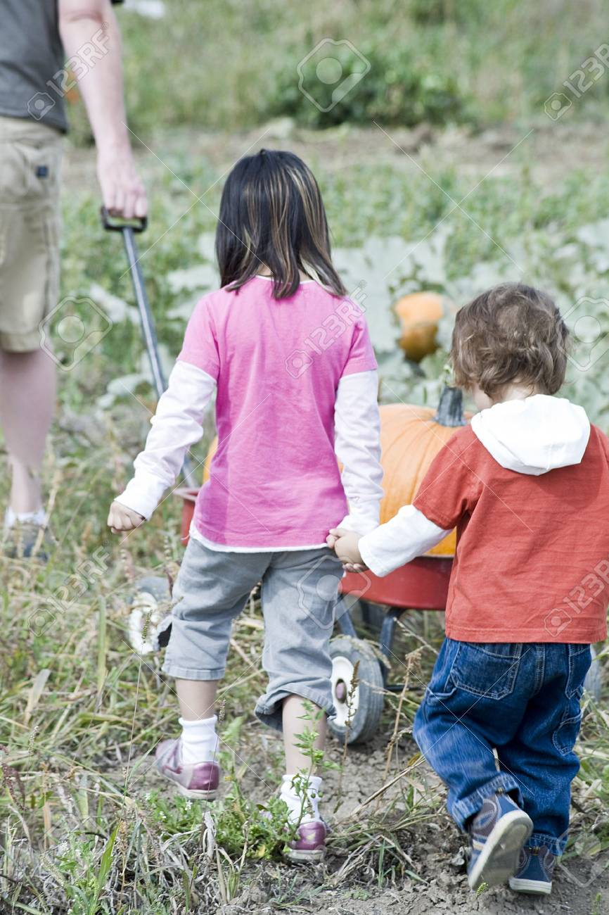 Two young children playing in a Pumpkin patch Stock Photo - 5353069