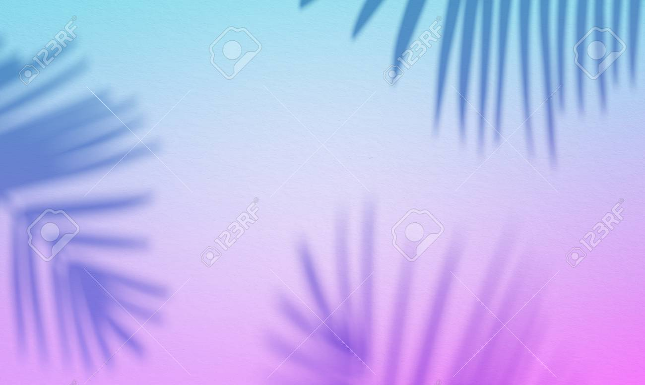 3d Illustration Of Palm Leaves Shade On Blue Pink Background