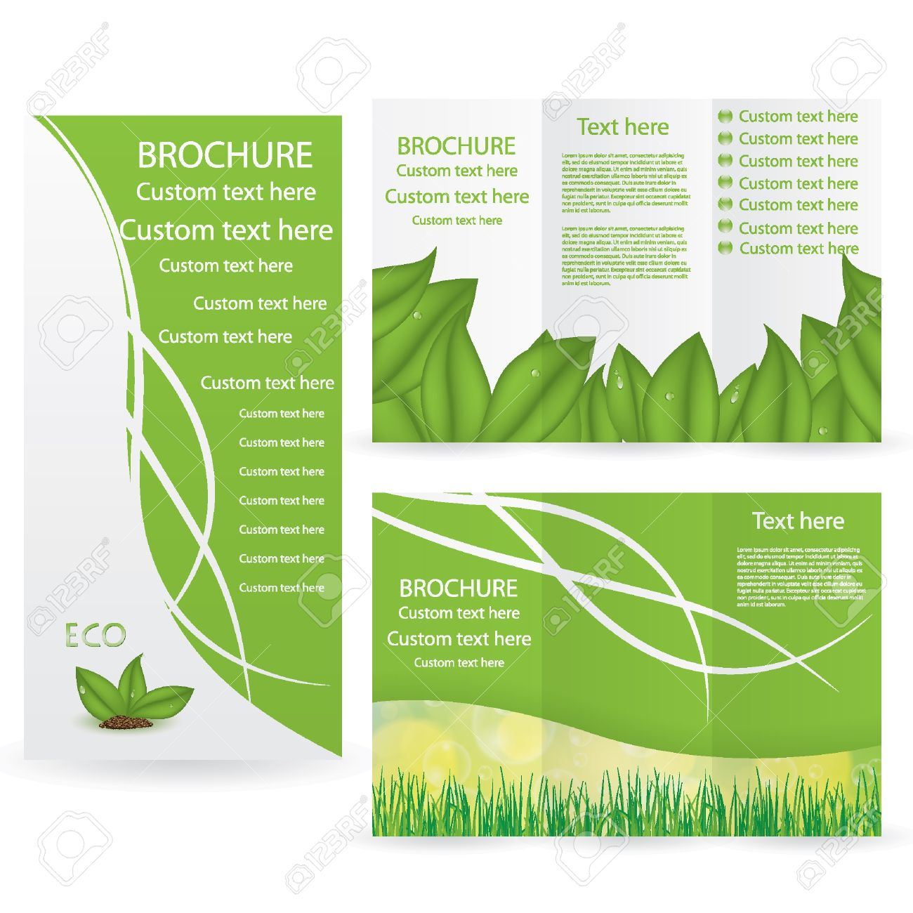 vector vector brochure layout design template green environmental