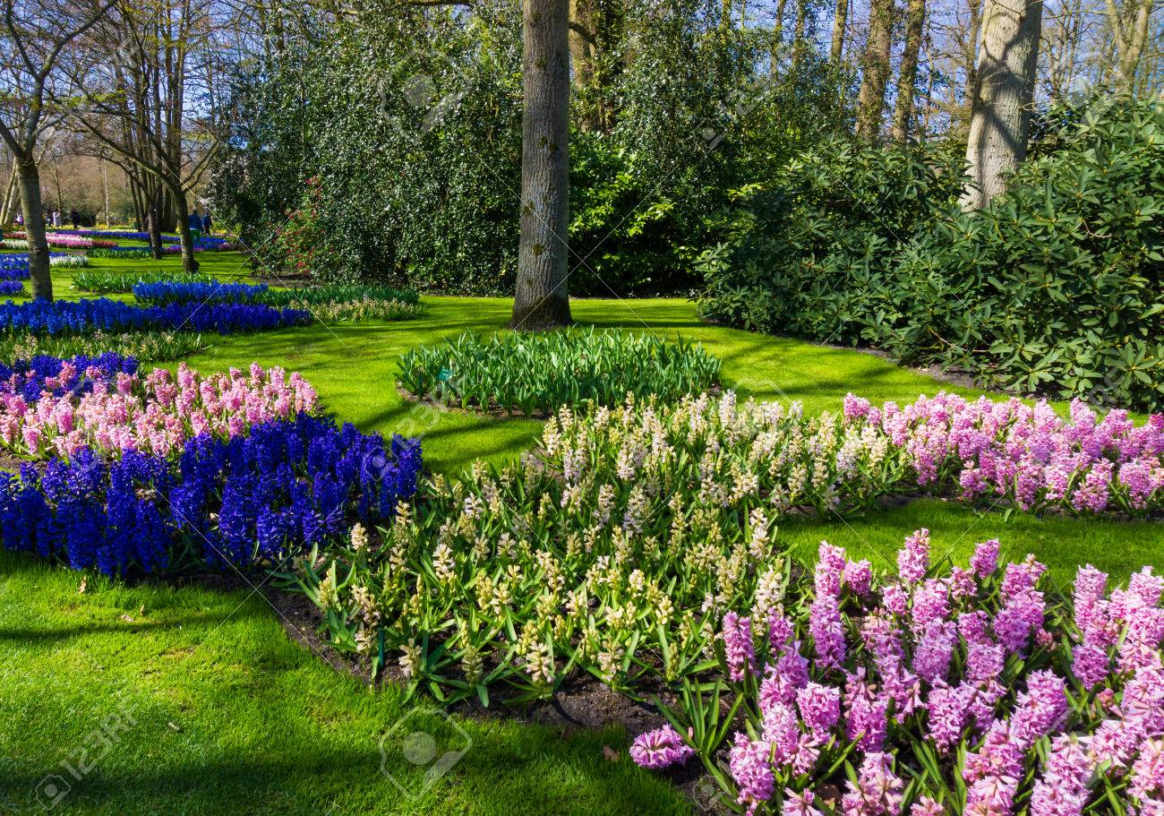 Beautiful Garden. Garden Landscape. Landscape Design Stock Photo ...