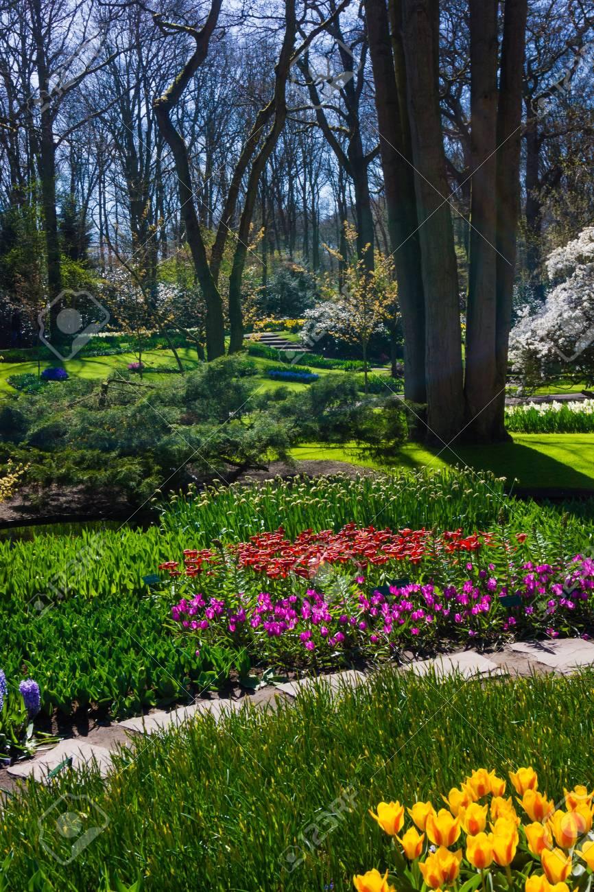 Foto De Archivo   Hermoso Jardin. Paisaje Del Jardín. Diseño De Exteriores